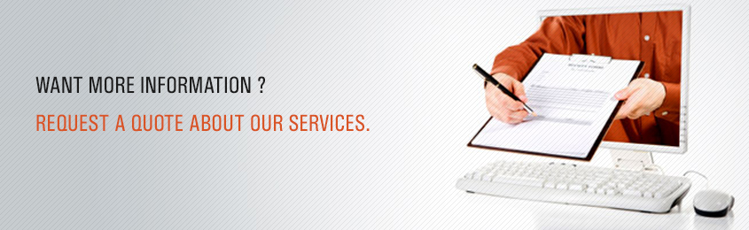 Request A Quote Gorgeous Website Designing Company Web Design Company Hisar Website Design